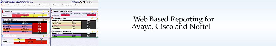 Web Based Reporting for Nortel, Cisco, Avaya